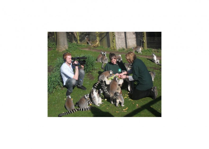 ICG PR coverage coup for Blackpool Zoo